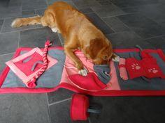 Chelsey vind na 2 jaar haar puzzelkleed nog steeds leuk, maar ik vond het tijd worden voor een nieuwe uitdaging. Deze puzzels waren voor haar een makkie, dus nu een tikkeltje moeilijker Brain Games For Dogs, Dog Games, Diy Cat Toys, Dog Toys, Puppy Crafts, Dog Enrichment, Dog Puzzles, Puppy Clothes, Dog Sweaters