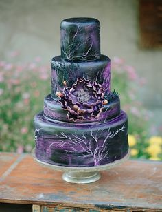 """Maleficent-inspired cake and ARTISTIC photo ideas and """"story line"""".  Very imaginative."""