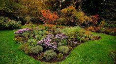 Noch gib`s bei uns keine Sonne.  ...  Der Hochnebel hält sich zäh. Aber trotzdem gibt es Farben. Auch im Garten. :-)