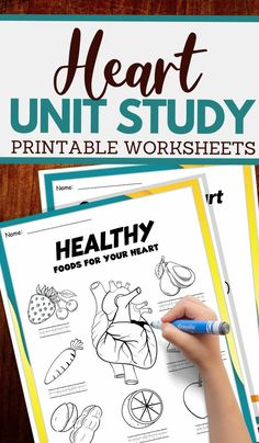parts of the heart and more worksheets Free Printable Worksheets, Worksheets For Kids, Learning Resources, Fun Learning, Learning The Alphabet, Alphabet Activities, Science Activities For Kids, Health Lessons, Heart For Kids