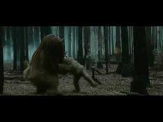 Donde viven los monstruos [Vídeo] / directed by Spike Jonze. -- Madrid : Warner Bros Entertainment España, cop. 2010