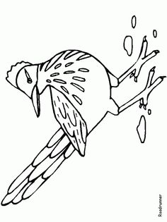 Big Coloring Pages Of Animals | Roadrunner Animals Coloring Page Picture | Kidskat.com