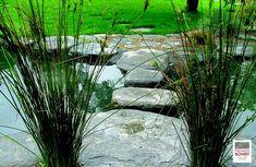 Schist Stone Alpine Stepper, Schist decoration, Schist Walling, Schist cladding, Premier Schist Stone Stone Supplier, Auckland, New Zealand, Sustainability, Plants, Plant, Planets, Sustainable Development