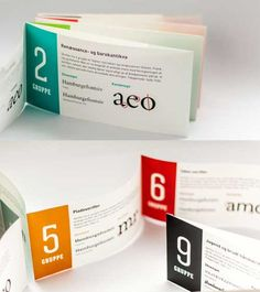 printed brochure design accordion fold