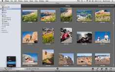 iPhoto tips and tricks: iPhoto tips 41-60: Organise your photos