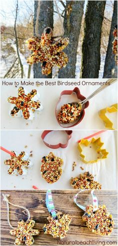 How to Make The Best Birdseed Ornaments, Homemade Birdseed treats make the perfect family activity, DIY Bird feeders are a great craft for kids, Birdseed Ornaments Recipe birdseedornaments Birdtreats homemadebirdfeeders birds 564498134545440405 Pine Cone Bird Feeder, Bird Feeder Craft, Best Bird Feeders, Homemade Bird Feeders, Bird Seed Feeders, Bird Crafts, Nature Crafts, Beach Crafts, Bird Feeders For Kids To Make