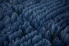 """The Stone Forest In Madagascar    What you see below are limestone """"needles"""" in the Tsingy de Bemaraha Strict Nature Reserve in Madagascar. It's almost unbelievable that this is a place on Earth and not some alien planet."""