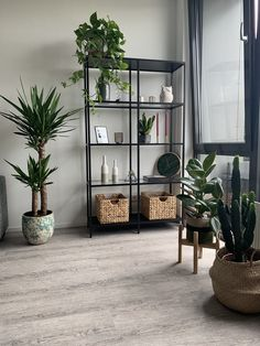 Ikea VITTSJO with plants - Ikea VITTSJO with plants, You are in the right place about minimalist kids H - Home Living Room, Living Room Designs, Living Room Decor, Bedroom Decor, Small Apartment Living, Living Room Colors, Apartment Interior, Room Interior, Home Interior Design
