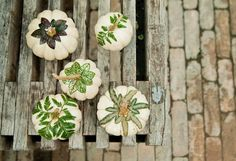 How-To: Botanical Pumpkins in The BLOG at Terrain