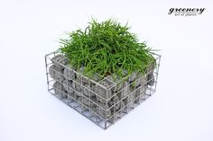 Gabion pot with anthracite pebbles – Gabion creations by greenery