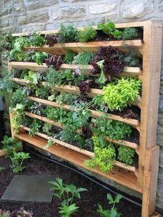 DIY Vertikaler Garten – Gartendeko selber machen