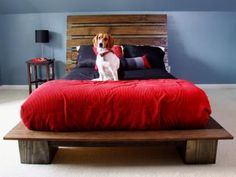 DIYNetwork.com has instructions on how to build a platform bed with a modern-style headboard.