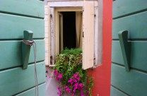 Using Airbnb in Rovinj, Croatia View out the wood-shutters Airbnb Host, Wood Shutters, Rovinj Croatia, Seaside Towns, The Fool, Old Things, Tips, Outdoor Decor, Waiting