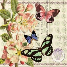 Studio Voltaire specializes in licensing quality artwork from various artists. Vintage Labels, Vintage Cards, Vintage Paper, Vintage Postcards, Butterfly Images, Vintage Butterfly, Butterfly Art, Butterfly Tattoos, Floral Vintage