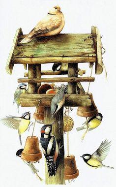 Artist Marjolein Bastin  The busy, beautiful birds