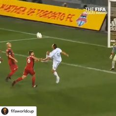 FIFA released its nominations for the Puskas award, the honor for the season's best goal. Goals include Zlatan Ibrahimovic's karate-like volley against Toronto and Messi's fragile chip against Real Betis. Funny Soccer Pictures, Funny Soccer Memes, Soccer Gifs, Soccer Humor, Football Humor, Football Gif, Funny Sports, Funny Minion, Funny Photos