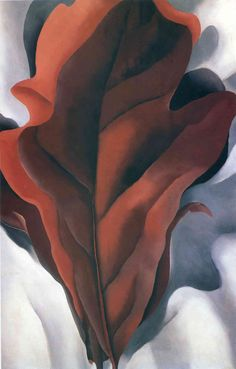 Large Dark Red Leaves on White by @georgia_okeeffe #precisionism