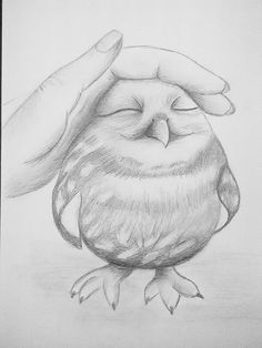 #owl #drawingpencil