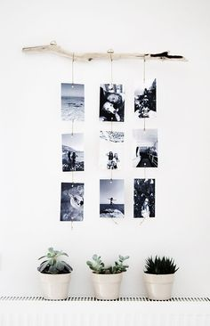 @beyjess12 // I love this idea of hanging pictures on strings from a piece of driftwood!