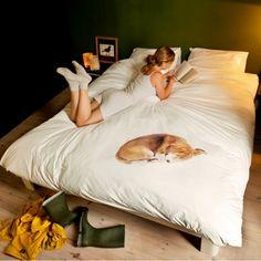 Voor iedereen die geen huisdieren heeft, maar wel graag zou willen   | roomed.nl