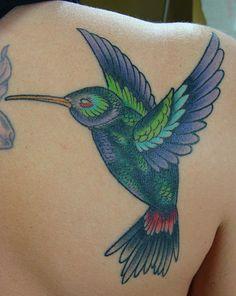 {hummingbird}