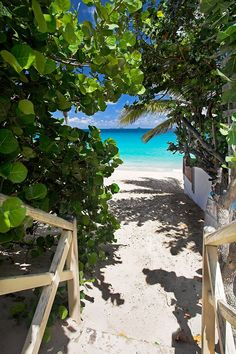 Saint Barth - The most chic of the West Indies - Caribbean - Traveltik 1 Tropical Vibes, Tropical Paradise, Surf Trip, Beach Trip, Beautiful Beaches, Beautiful Islands, St Barts Island, Places To Travel, Places To Go