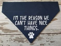Funny Dog Bandana, I'm The Reason We Can't Have Nice Things, Over the collar bandana, slide on bandana, Cat bandana Puppy Bandana, Cat Bandana, Dog Quotes Funny, Funny Dogs, Bandana Colors, Dog Crafts, Dog Shirt, Diy Stuffed Animals, Vinyl Lettering