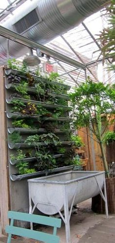 vertical garden by Pamela Pyne