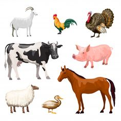 Illustration about Farm animals decorative icons set with cow goose pig horse isolated vector illustration. Illustration of breed, birds, collection - 51837981 Animals Of The World, Animals For Kids, Farm Animals, Animals And Pets, Funny Animals, Cattle Panels, Image Poetry, Lucky Rabbit, Farm Yard