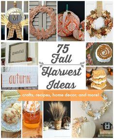 75 Fall Harvest Idea