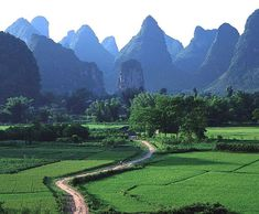 These mountains are famous for their beauty. Located in southern China, in Guangxi, they can be best seen in Yangshuo, a small town near Guilin, a major city in Guangxi.
