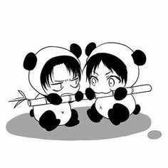 Levi x Eren pandas