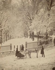 1875 - Snow Scene, Boston Common. by Josiah Johnson Hawes