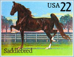 Race Horse Painting - Saddlebred Horse by Lanjee Chee
