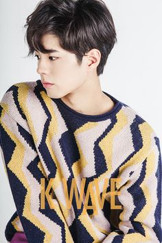 Park Bo-Gum: Naeil's Cantabile, Hello Monster, Reply 1988