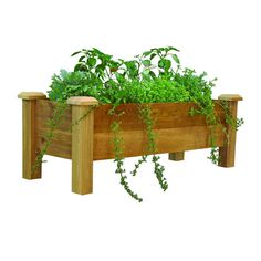 48 in. x 18 in. Rustic Cedar Planter Box, Unfinished Cedar