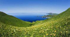Bing Image Archive: 「澄海岬」北海道, 礼文島 (© Jason Hawkes/Corbis)(Bing Japan)