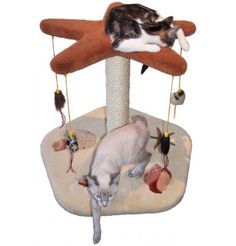 Starfish Playset - It's most beautiful feature is the 5 sculptured seashell inlays on the base – some of our most detailed inlays ever offered!!! As shown, an optional sisal rope scratch post is available, including an option for dyed sisal.