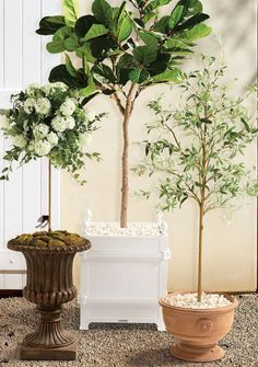 Shop Planters from Frontgate.