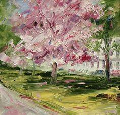 Cherry blossom, Montpellier Gardens
