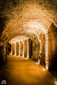 Spartacus Arena, Campania