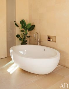1000 Images About Limestone On Pinterest Egypt Basins
