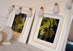marcos para decorar fotografías