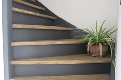 Home Renovation, Home Remodeling, Cottage Staircase, Stairway Gallery Wall, Home Interior Accessories, Luxury Flooring, Grey Home Decor, Pet Gate, Rainbow Wall
