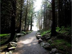 Makes me want to walk down that path....