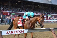 Multiple grade 1 winner Lady Eli has been retired from racing and will be bred to War Front in owners Sol Kumin and Jay Hanley announced Jan. Horse Racing, Race Horses, Ballston Spa, Horse Profile, Sport Of Kings, Racing News, Thoroughbred, Grade 1, Looking Back