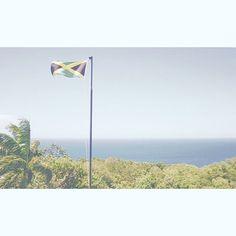 【____u.m_】さんのInstagramをピンしています。 《緑は土地、黄色は笑顔、黒は肌の色。 何故か、首から腕、腰にかけて、引きつったような痛みに襲われています。そんな中の更新。。アイタタタ #🇯🇲 #🌳 #🌊 #🌴 #ジャマイカ #国旗 #レゲエ #ファインダー越しの私の世界 #カメラ女子 #海 #森 #自然 #jamaica #jamaican #ocean #sea #forest #tree #treestagram #flag #photo #camera #canon #instamood #instagram #travel #art #fashion #trip #travelgram》