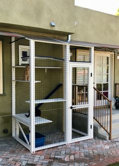 Diy Cat Enclosure, Outdoor Cat Enclosure, Patio Enclosures, Reptile Enclosure, Outdoor Cats, Outdoor Cat Cage, Living With Cats, Cat Cages, Cat Window