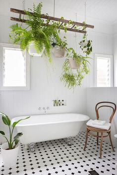 Scandinavian bathroom with clawfoot bathtub and hanging plants Bathroom 10 Soothing Scandinavian Bathroom Ideas Spa Like Bathroom, Bathroom Plants, Diy Bathroom Decor, Bathroom Renos, Bathroom Interior Design, Bathroom Renovations, Decor Interior Design, Bathroom Ideas, Open Bathroom