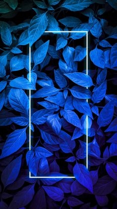 Blue Foliage Neon Light iPhone Wallpaper - iPhone Wallpapers